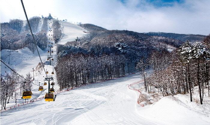5 Ski Resort Terbaik di Korea Selatan yang Dekat dengan Kota Seoul 9