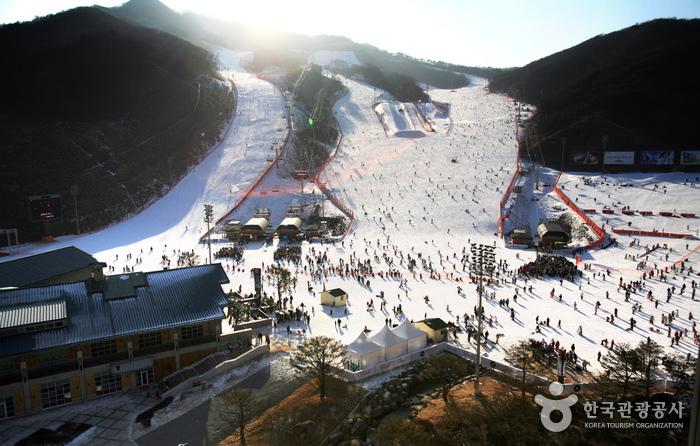 5 Ski Resort Terbaik di Korea Selatan yang Dekat dengan Kota Seoul 7