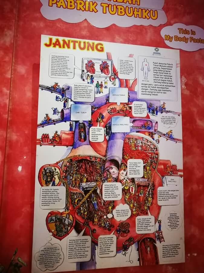 Serunya Menghabiskan Libur Natal Bersama Keluarga di Jawa Timur Park 4
