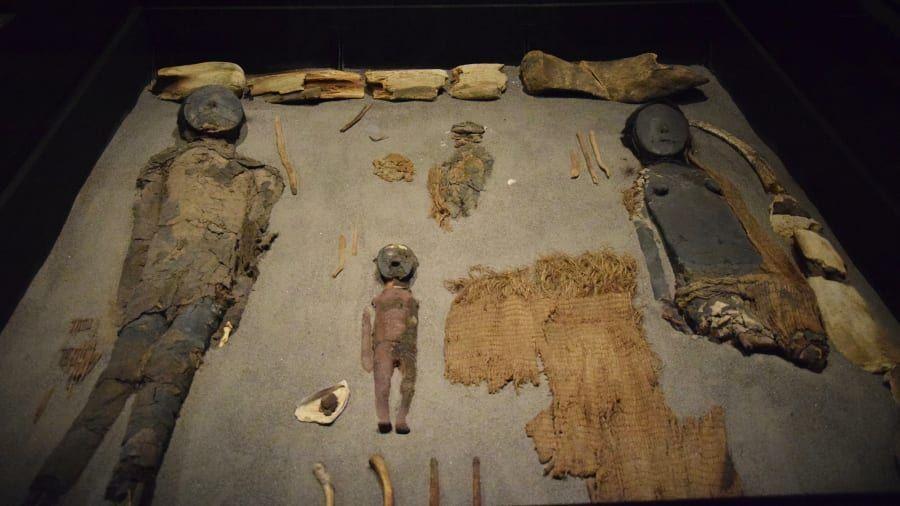 Mumi Suku Chinchorro