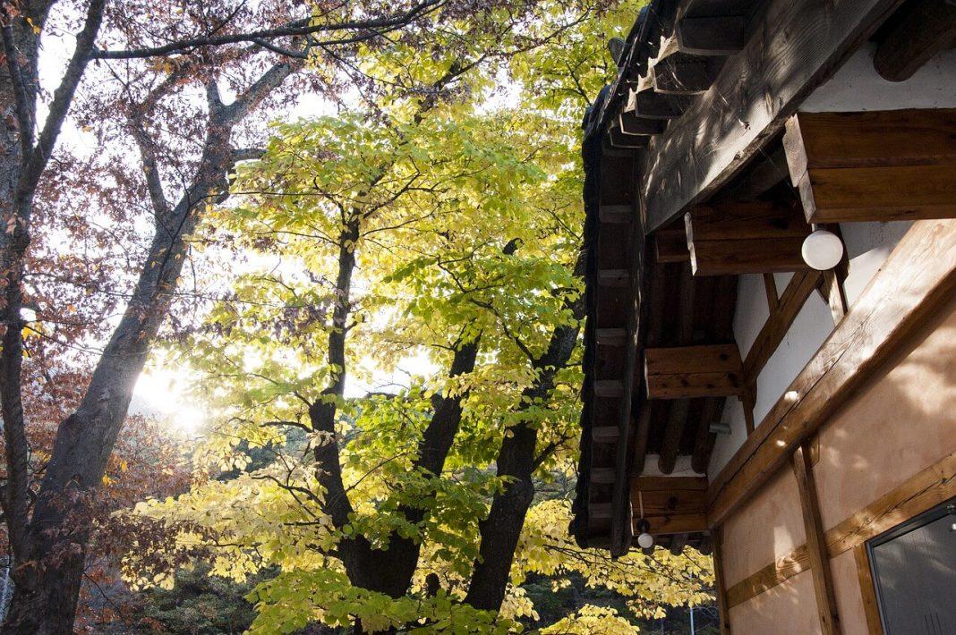 10 Kota Menarik Korea Selatan yang Cocok Dikunjungi Turis 5