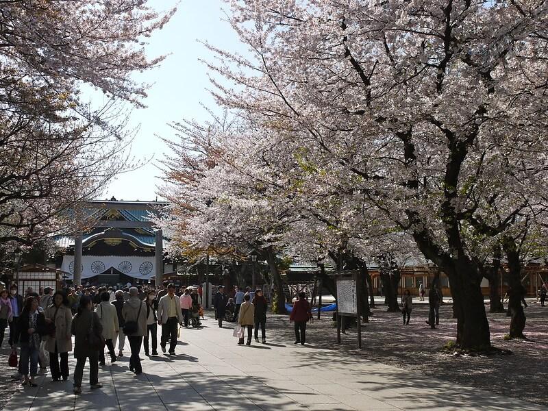 Inilah 10 Spot Terbaik untuk Melihat Bunga Sakura di Tokyo 14