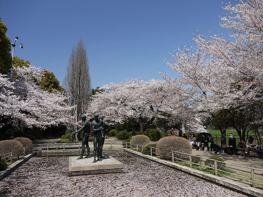 Inilah 10 Spot Terbaik untuk Melihat Bunga Sakura di Tokyo 13